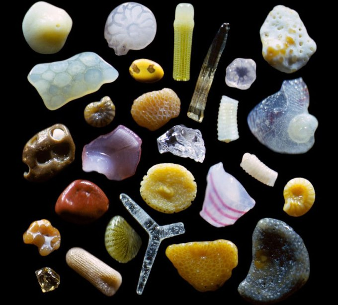 sand-grains-under-microscope-gary-greenberg-1