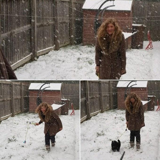 snowtimewithcats